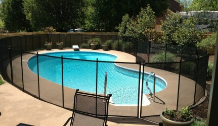 Kidney Shaped Pool with Pool Fence